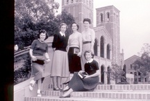 Our Story / by UCLA SON