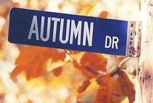 Fall * Autumn * Harvest / by diantique