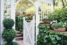 Garden Gates and Arbors / by Paige Spink
