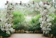Alters, Aisles and Arches / Wedding Inspiration / by Paige Spink