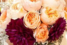 Jaw dropping Bouquets & Boutineers / Fab florals ranging in all shapes and sizes! / by Brooke Wright
