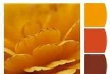 Color: Warm Tones / by Hobby Lobby