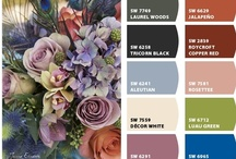 COLOR FOR MY HOME / PAINT MY WALLS / by Shabby Chic Shoppe