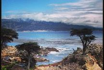 SF Bay Area Activities / Fun things to do in the SF Bay Area! / by Rebecca Seipert