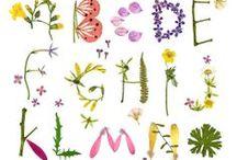 to make ● ABC / Buchstaben Ⓐ typography Ⓑ lettres Ⓒ karakteren / by reizenbee