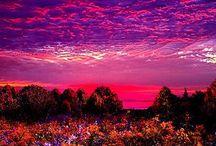 Beauty of the World / by Stacy Ballard