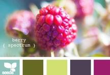 Color Palettes / by Natasha (The Cake Merchant)