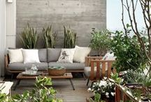 Outdoor Spaces. / by Sarah Duncan
