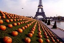 """Fall"" in Love Again / #fall #autumn #idea #tips #quote #halloween #october #november #cocooning  / by Warwick Hotels"