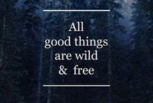 Words of Wisdom / by Wendilyn Perez