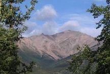 My Alaska / by Alda Norris
