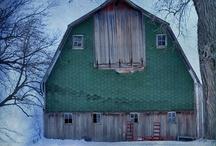 Farm / by Marshall and Christine Hughey