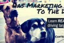 Content Marketing / Everything about content marketing and building authority and thought leadership with a tight, professional content marketing strategy. / by Jack Humphrey