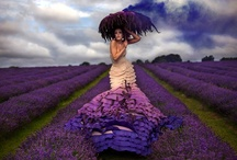 Colour-Purple People Eater / different shades of purple / by The Inspired Nester