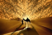 Morocco and it's Magic / by The Inspired Nester