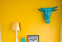 yellow / by Beth Dryden