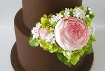 Cakes!!! / by Malinda Gregory