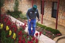 Staff / by La Hacienda Treatment Center