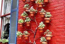 Garden - Ideas / by Jan Horwood