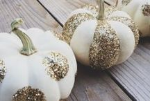 Fall / by Megan Huffman