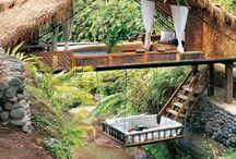 Treehouse/Poolhouse/Greenhouse / Treehouse + Poolhouse + Greenhouse + Home + Garden / by Gloria Sedano-Sarabia