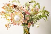 Flowers / by Sarah Leah Avigdori