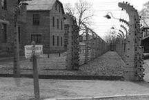 Auschwitz-Birkenau / by Cynthia Southern