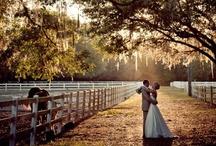 bride and groom / by Katie Ingraham
