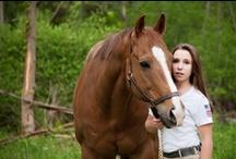 my equine work / by Katie Ingraham