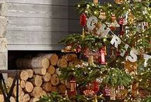 Oh Christmas Tree  / Merry and bright holiday decor ideas - Christmas trees, lights and holiday delights! / by ATGStores.com