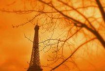 It's All Orange / by Vanessa Bennink