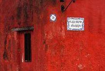 It's all Red / by Vanessa Bennink