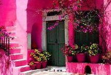 It's all pink / by Vanessa Bennink