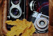 North Carolina Autumn / by Al/ex/a/ndra