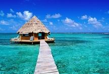 My Dream Vacation! / by Veronica Delgado
