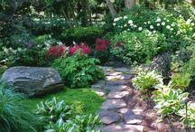 Down the Garden Path / by Christine Arnet