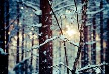 *Let it snow* / by Deedee' tm