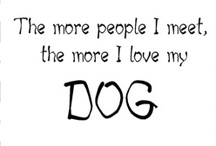 I ♥ dogs! / by Camille Brown