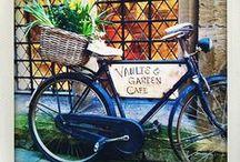 Bicyclette / by Lindsay Hogan