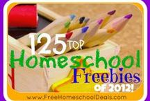 Homeschool? Maybe. / by Lori Shores