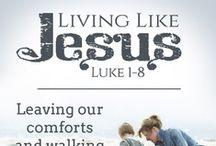 Bible Study - Luke 1-8  2013 / Good Morning Girls Bible Study -- Luke 1-8  / by Martha