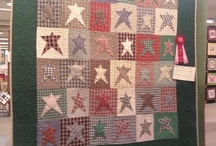 Quilts / Quilting / by Roseanne Forrester