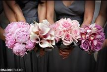 wedding bells. / by Katie Brown
