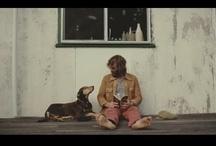 Videos / by Brigitte Marlot