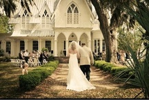 Wedding Ideas / by Staci Johnson