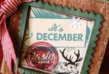 December Daily / by Paula Armstrong