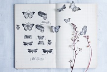 Ideas / by Craig & Eva Sanders