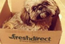 FreshDirect Fan Mail / by FreshDirect