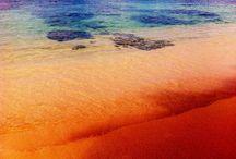 My Life Kauai  / by Jessica Glovasa