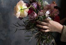 Weddings / by Craig & Eva Sanders